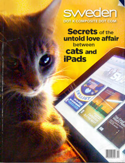 The Love Affair Between Cats and iPads