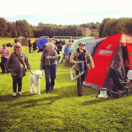 Dog show in Gubbängen